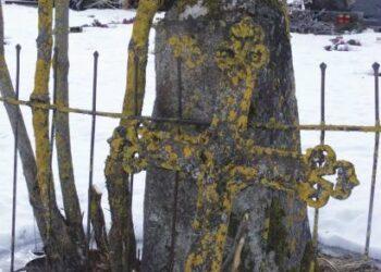 Šis metalinis kryžius nuo laiko supanašėjo su medžiais - tiek ant medžių, tiek ant kryžiaus želia samanos.