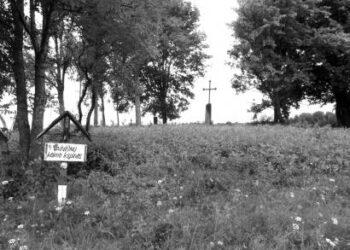 Tradicinė senkapių ateitis – tokia, kaip Vainiūnuose: vienintelis senasis kryžius ir rodyklė, kapines liudijanti.