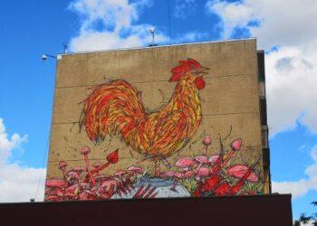 Prieš metus Anykščių miesto centre, ant bendrabučio sienos, nupieštas gaidys kurstė aistras. Akys priprato ir šiandien daugelis praeivių jo net nebepastebi.