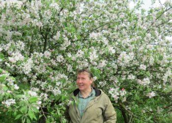 """Vidai Danytei, kas savaitgalį grįžtančiai iš darbo į kaimą, patinka stebėti, genėti ir puoselėti nemažą obelų sodą. """"Grožis ir geros emocijos net svarbiau už duodamą naudą"""", – teigia mokslininkė."""
